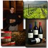 Beginner Wine Class